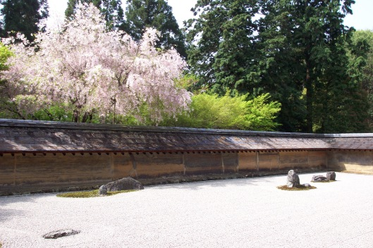 The famed rock garden of Ryoanji with sakura blossoms.