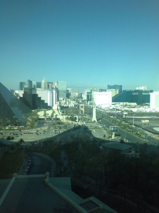 The Las Vegas Strip from  Mandalay Bay.