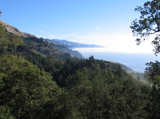 A glimpse of Big Sur. Stay tuned....