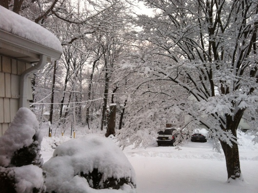 The view outside Jan's family home in New Jersey two weeks ago.