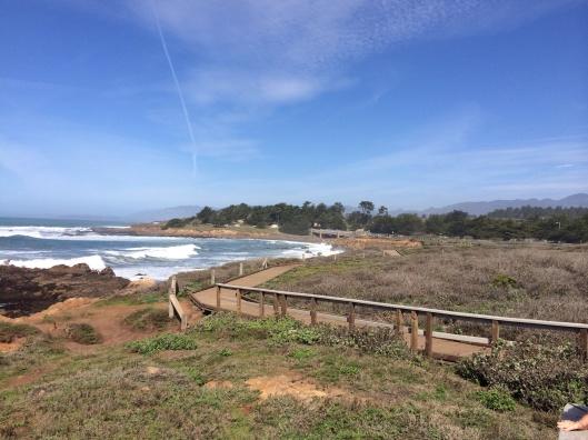 The path on Moonstone Beach.