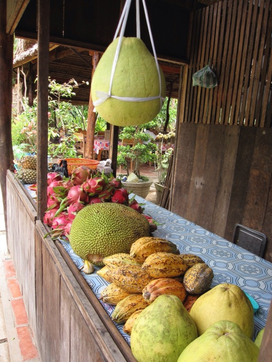 Cacao beans in the Mekong Delta in Vietnam.
