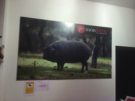 The revered Iberian pig fed exclusively on acorns.