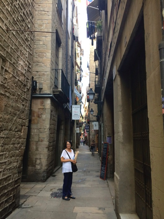 The Hidden Street in the El Born District.