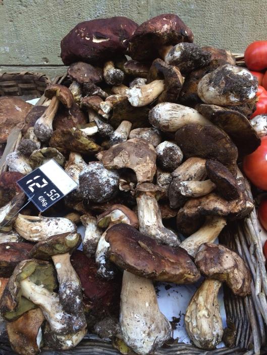 Fresh porcini in October in San Sebastian.