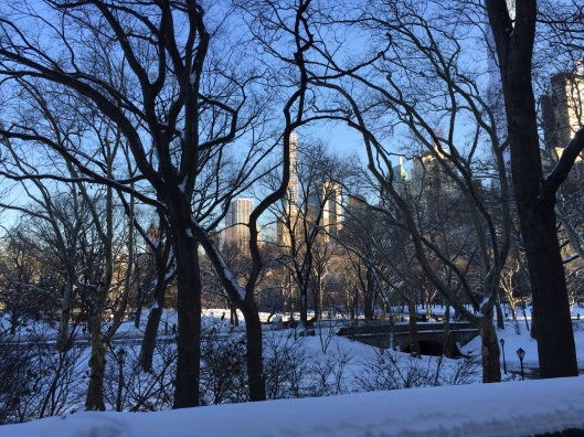 Central Park in the snow.
