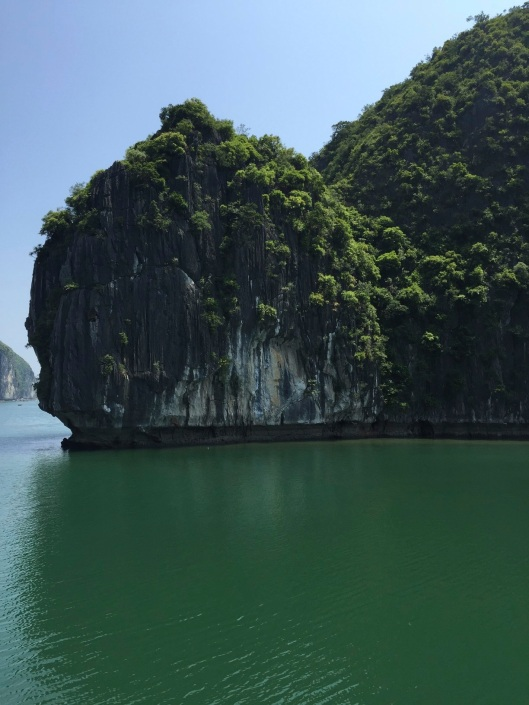 Karst rock up close amid deep green water.
