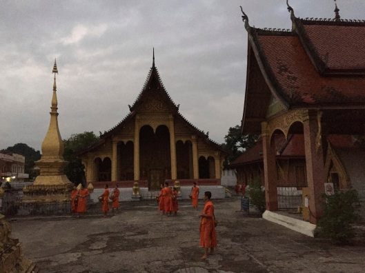 Monks gathering in the early morning before the alms ceremony.